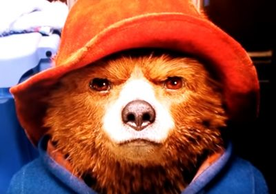paddington bear hard stare